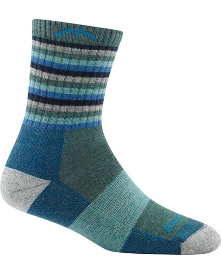 Darn Tough Women's Stripes Micro Crew Cushion Sock
