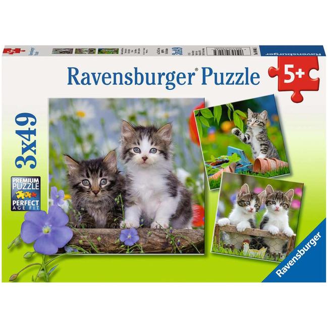 Ravensburger Chatons tigrés (3x49 pièces)