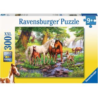 Ravensburger Chevaux sauvages (300 Pièces)