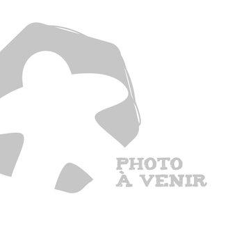 """La Revanche Temporary Tattoo - La Revanche logo (1"""" x 1"""")"""
