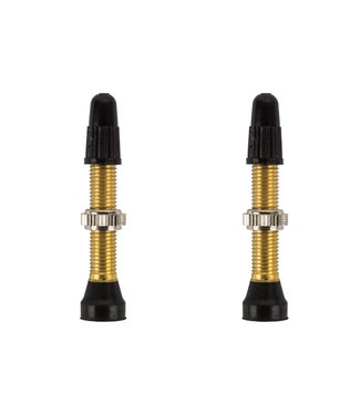 WTB TCS BRASS PRESTA VALVE 46mm 2PC
