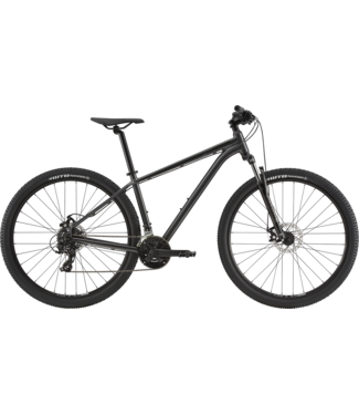 CANNONDALE 2020 29 Trail 8 GRAY LARGE