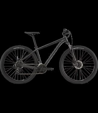 CANNONDALE 2020 29 M Trail 8 Graphite XL