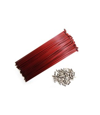 SPOKES SS HGS 237 14G BXof40 RED