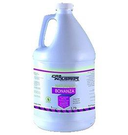 CleanHub Ultra Pro Bonanza, HD Stain Remover, 1 Gallon