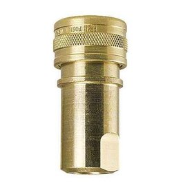 "QD Female BRASS - 1/4"" FPT - S/S Tip Viton - MADE IN USA"