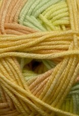Cascade Yarns Longwood Sport Stripe
