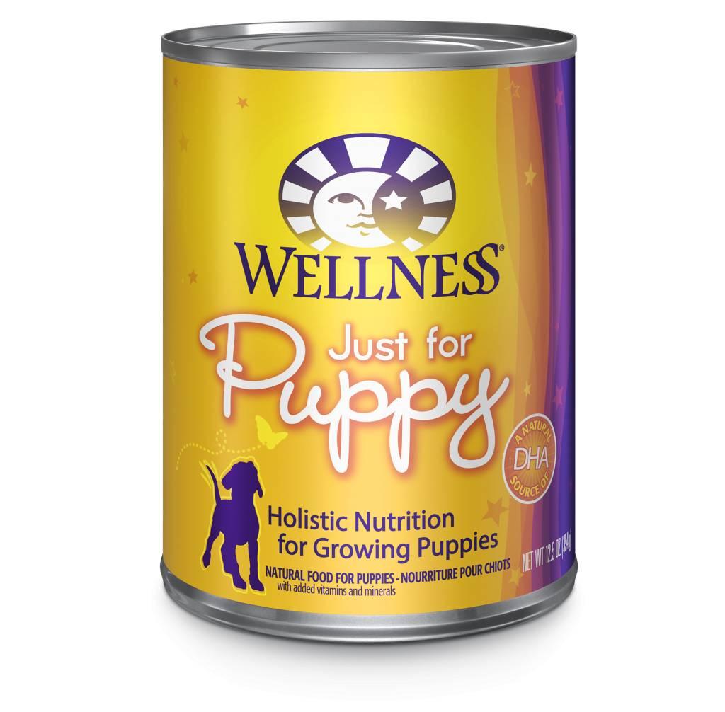 WELLNESS Wellpet Puppy 6oz