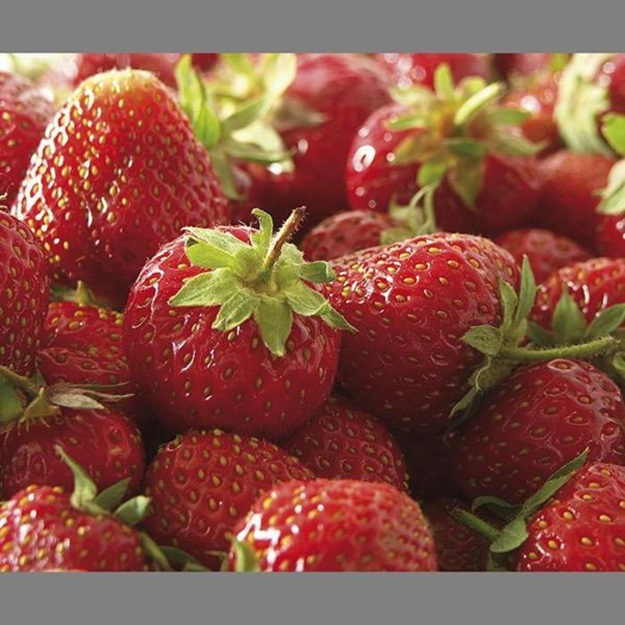Bulb Strawberry Eversweet Ever Bearing 10 Roots/pk