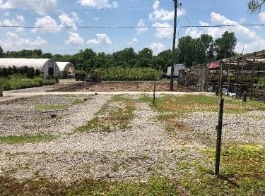 Bates Nursery and Garden Center Perennials