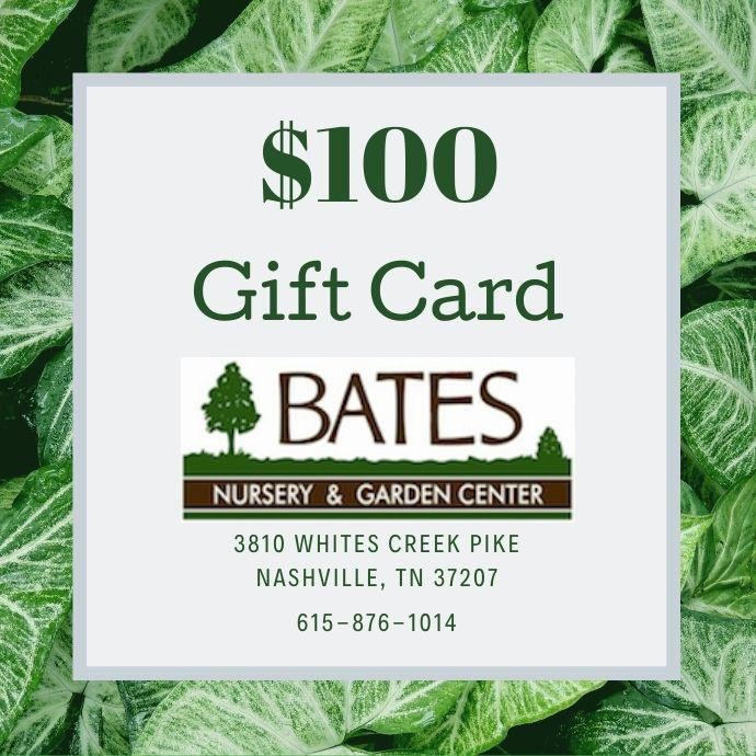 Gift Card for $100