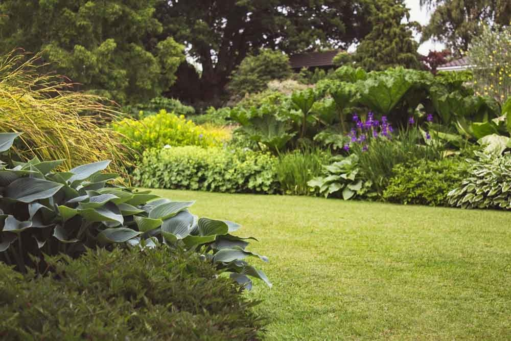 Landscape Design-Where to Start and What to Avoid