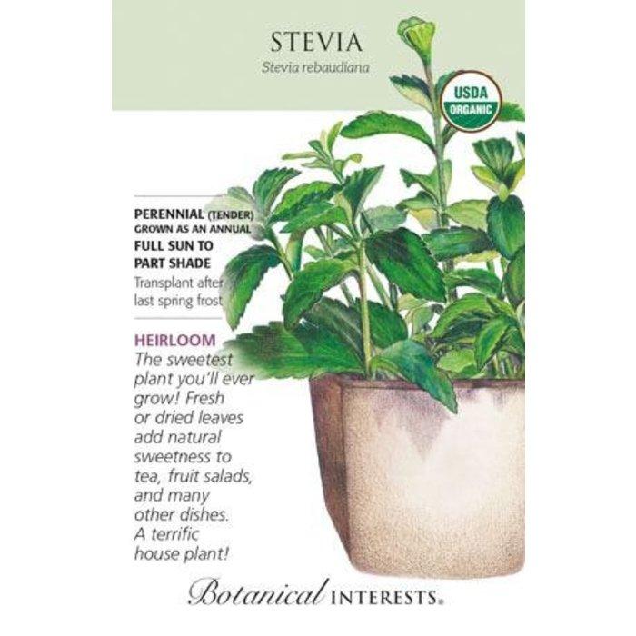 Seed Stevia Organic Heirloom - Stevia rebaudiana