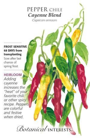 Seed Pepper Chile Cayenne Blend Heirloom - Capsicum annuum