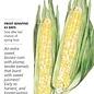 Seed Corn Sweet Sugarbaby Sweet (Bicolor) - Zea mays var rugosa (hybrid)