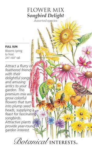 Seed Flower Mix Songbird Delight - Assorted species - Lrg Pkt