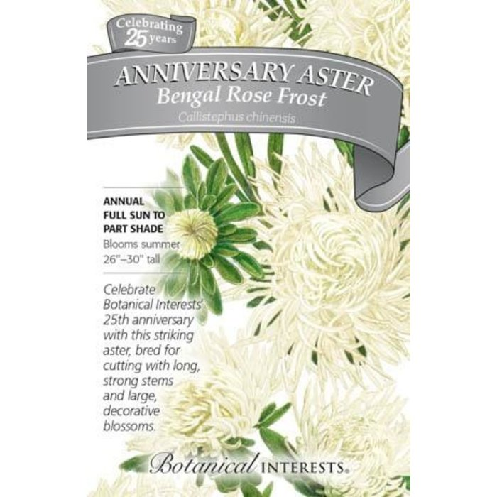 Seed Aster Anniversary Aster Bengal Rose Frost - Callistephus chinensis