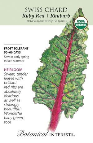 Seed Swiss Chard Ruby Red/Rhubarb Organic Heirloom - Beta vulgaris (Cicla group)