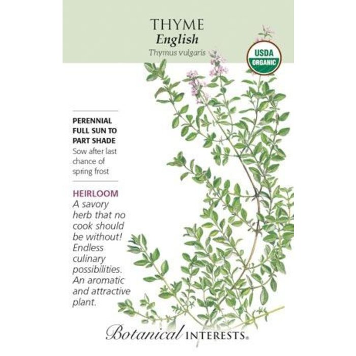 Seed Thyme English Organic Heirloom - Thymus vulgaris