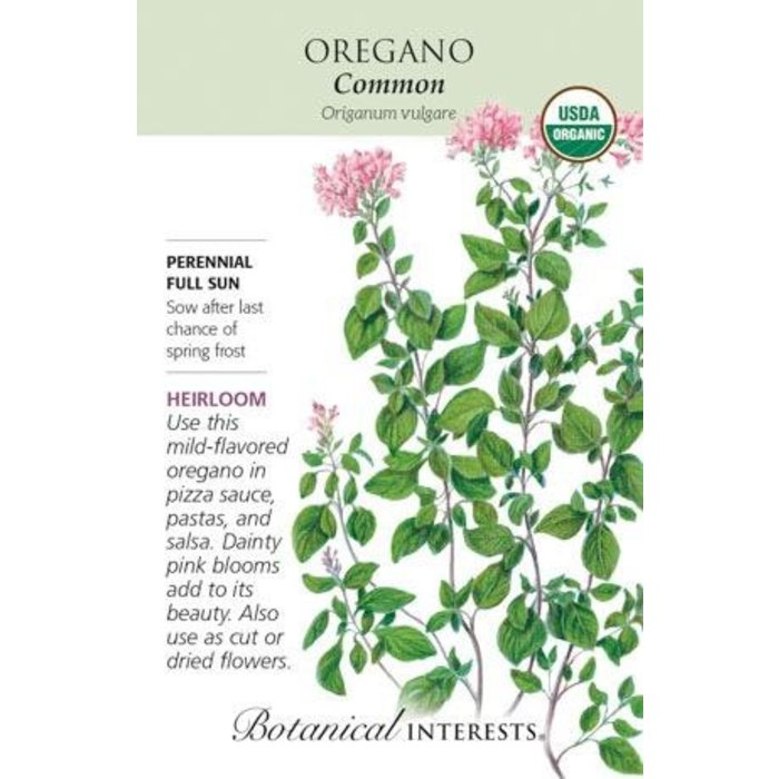 Seed Oregano Common Organic Heirloom - Origanum vulgare