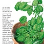 Seed Baby Greens Superfoods Mix - Brassica, assorted species - Lrg Pkt