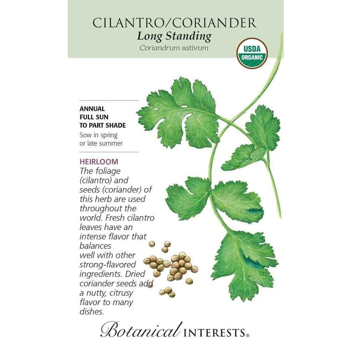 Seed Cilantro/Coriander Long Standing Organic Heirloom - Coriandrum sativum - Lrg Pkt