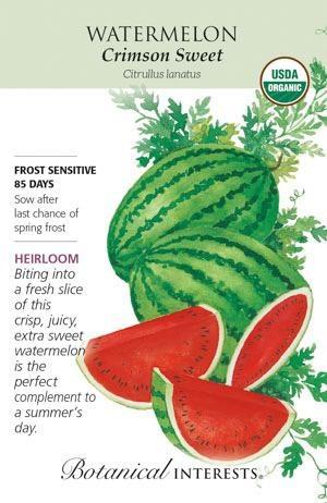 Seed Watermelon Crimson Sweet Organic Heirloom - Citrullus lanatus