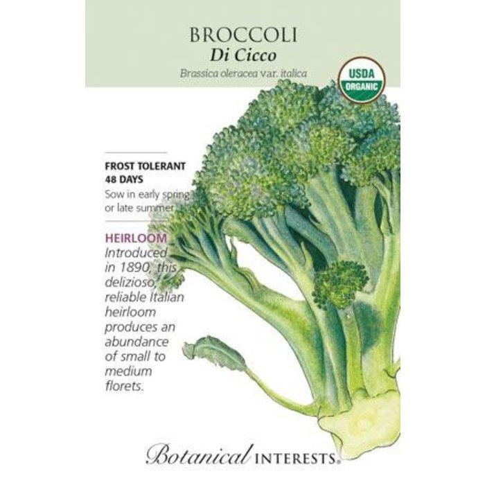 Seed Broccoli Di Cicco Organic Heirloom - Brassica oleracea