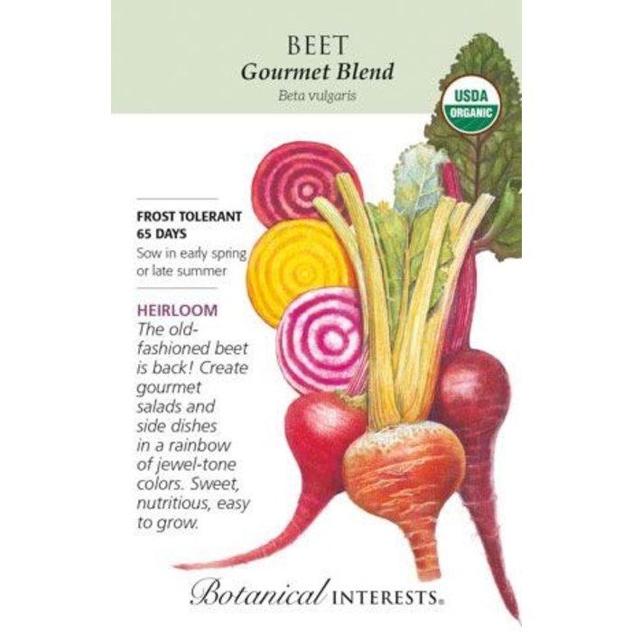 Seed Beet Gourmet Blend Organic Heirloom - Beta vulgaris