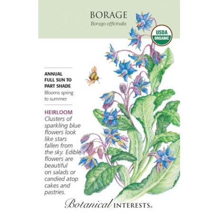 Seed Borage Organic Heirloom - Borago officinalis
