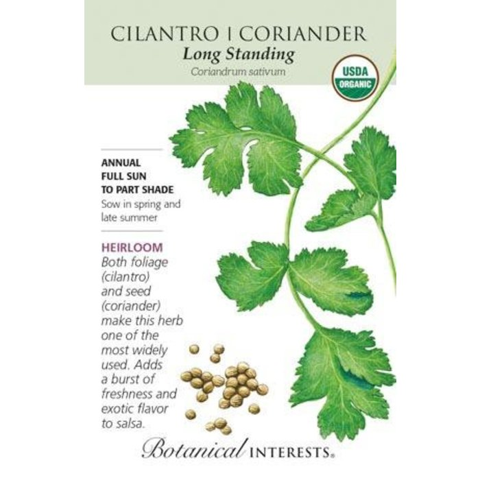 Seed Cilantro/Coriander Long Standing Organic Heirloom - Coriandrum sativum