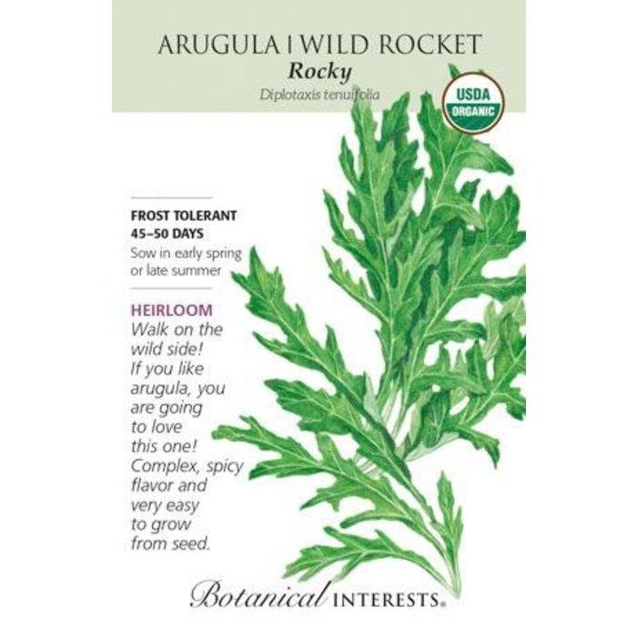Seed Arugula Wild Rocket Salad Organic Heirloom - Eruca vesicaria sativa