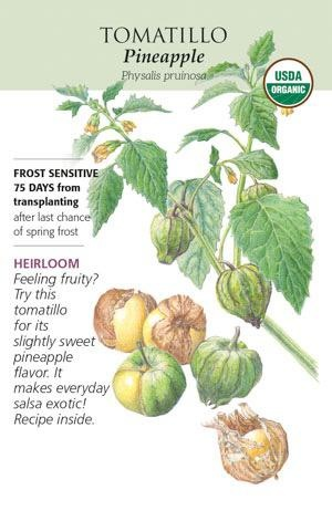 Seed Tomatillo Ground Cherry Pineapple Heirloom Organic - Physalis pruinosa