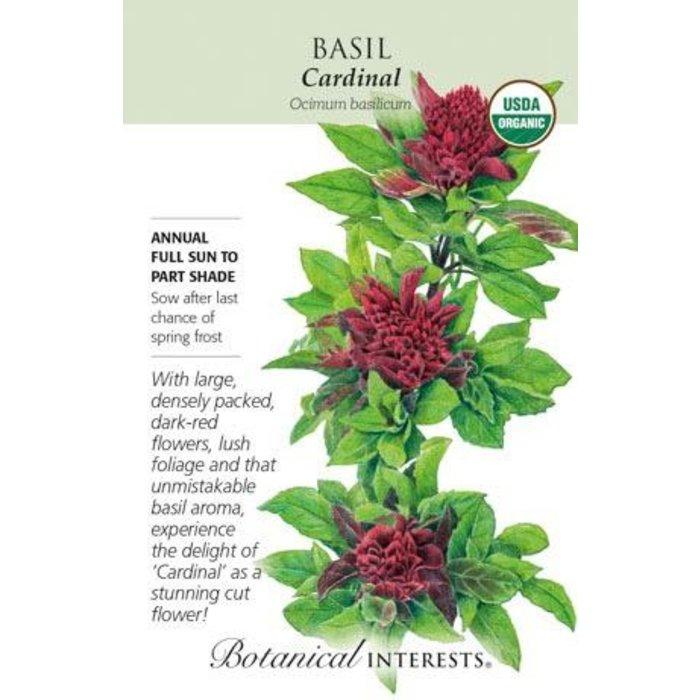 Seed Basil Cardinal Organic - Ocimu basilicum
