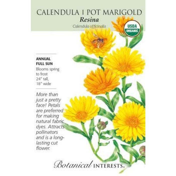 Seed Calendula Resina Organic - Calendula officinalis