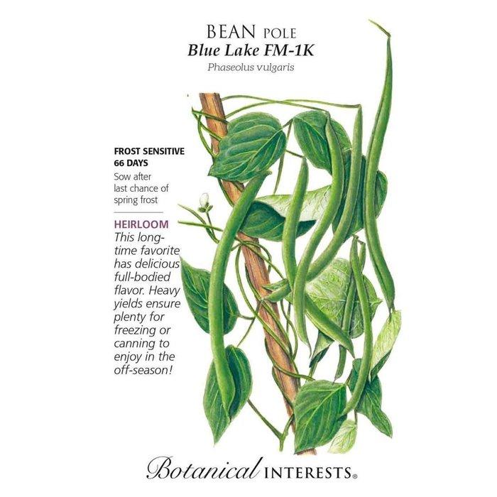Seed Bean Pole Blue Lake FM-1K Heirloom - Phaseolus vulgaris - Lrg Pkt