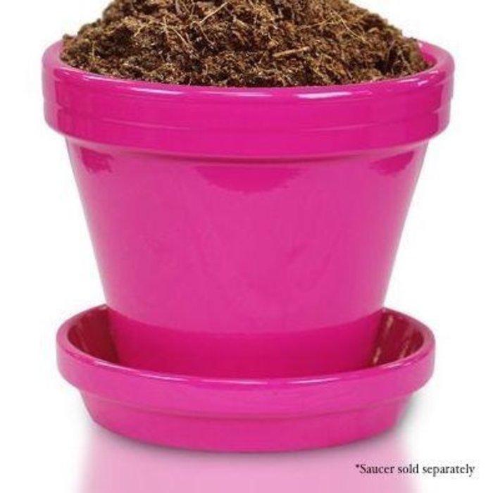 """Pot 4"""" Glazed Standard Raspberry"""