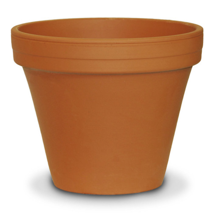"Pot 2.75"" Clay Standard / Terracotta"