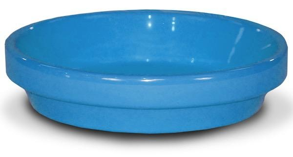 "Saucer 8"" Glazed Robin Egg Blue"