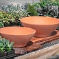 """Pot Low Bowl 12"""" Red Clay / Terracotta"""