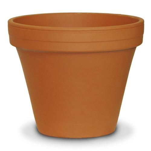 "Pot 8"" Clay Standard / Terracotta"