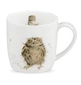 Royal Worcester Wrendale Mug: What a Hoot