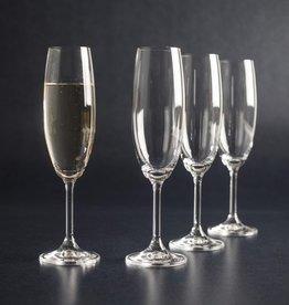 David Shaw Tableware Lara Champagne Flutes, 220mL 7.75oz, Set/4