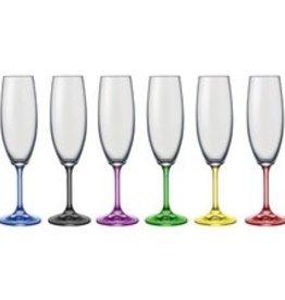 David Shaw Tableware Bohemia Rainbow Champagne Flutes S/6