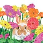 Gerbera Bunny Serviettes