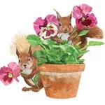 Flower Pot Squirrel Serviettes