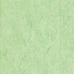 Pure Mint Green Serviettes