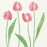 Old Country Design Watercolour Tulip Serviettes