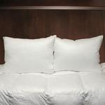 Cuddle Down Esprit Pillow - King