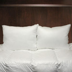 Cuddle Down Esprit Pillow - Queen
